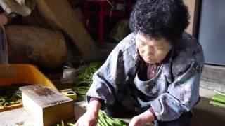Repeat youtube video 鮭川村木の根坂のワラビ出荷準備
