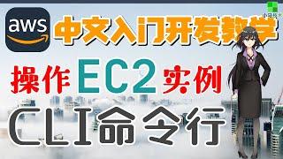 AWS 中文入门开发教学 - AWS CLI - 操作 EC2 实例,一切皆在命令中【1级会员】