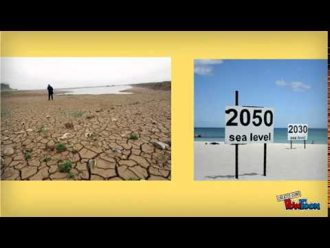 Current Environmental Issues from the Sociological Perspective