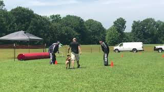 PSA2 Obedience Routine Clay Smith Kahn 2019