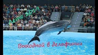 дельфинарий Новосибирск