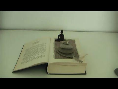 Diy Zengarten Miniatur Aus Altem Buch Basteln Upcycling Alte