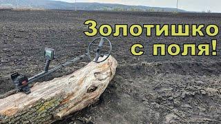 Золото с распаханного хутора! Коп с NOKTA Anfibio Multi! Фильм 138