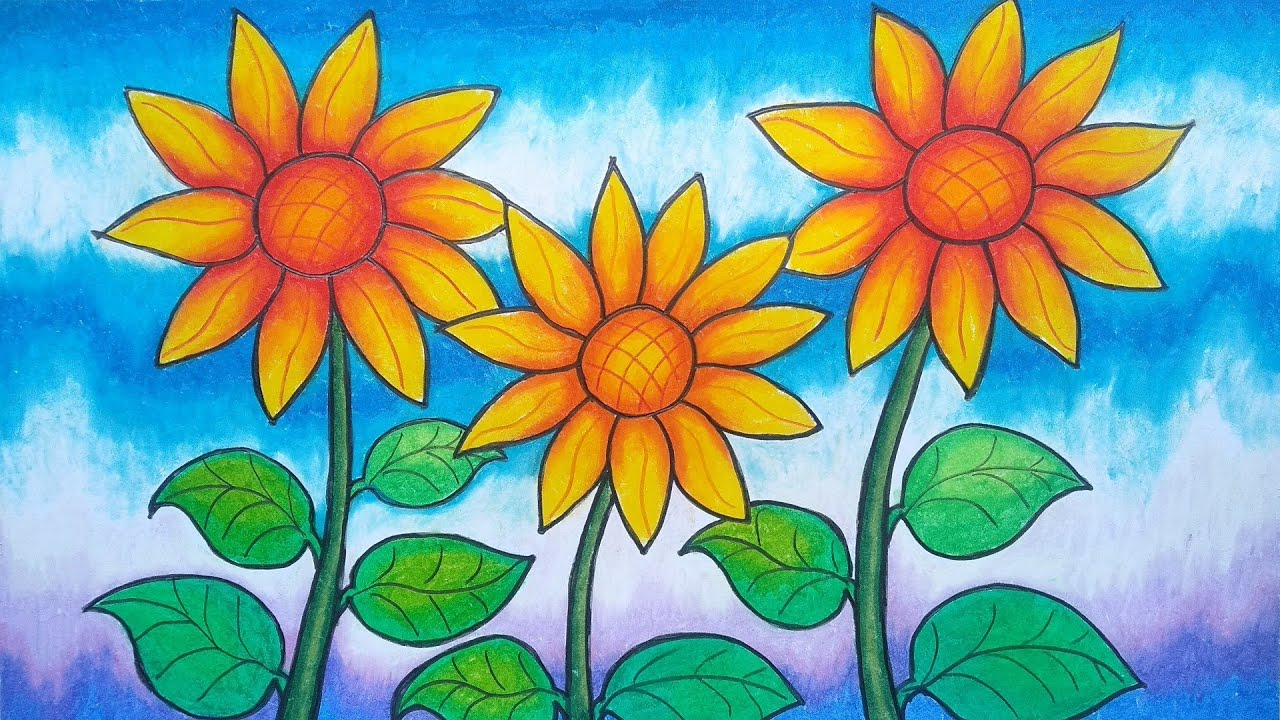 Cara Menggambar Dan Mewarnai Bunga Untuk Lomba Menggambar Bunga Matahari Youtube