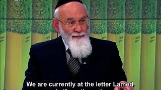 ראיון עם הרב פרופ' שטיינברג לונדון וקירשנבאום  Israeli Television Interview with Rav Steinberg
