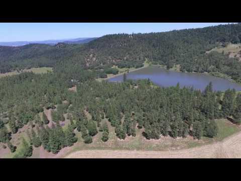Cross/Kaufman Ranch video 2
