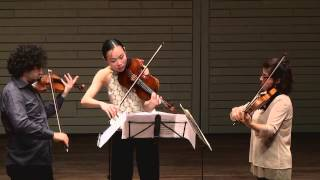 Dvořák: Terzetto, Op.74