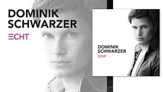 Dominik Schwarzer - Diesen Sommer (Album Version)