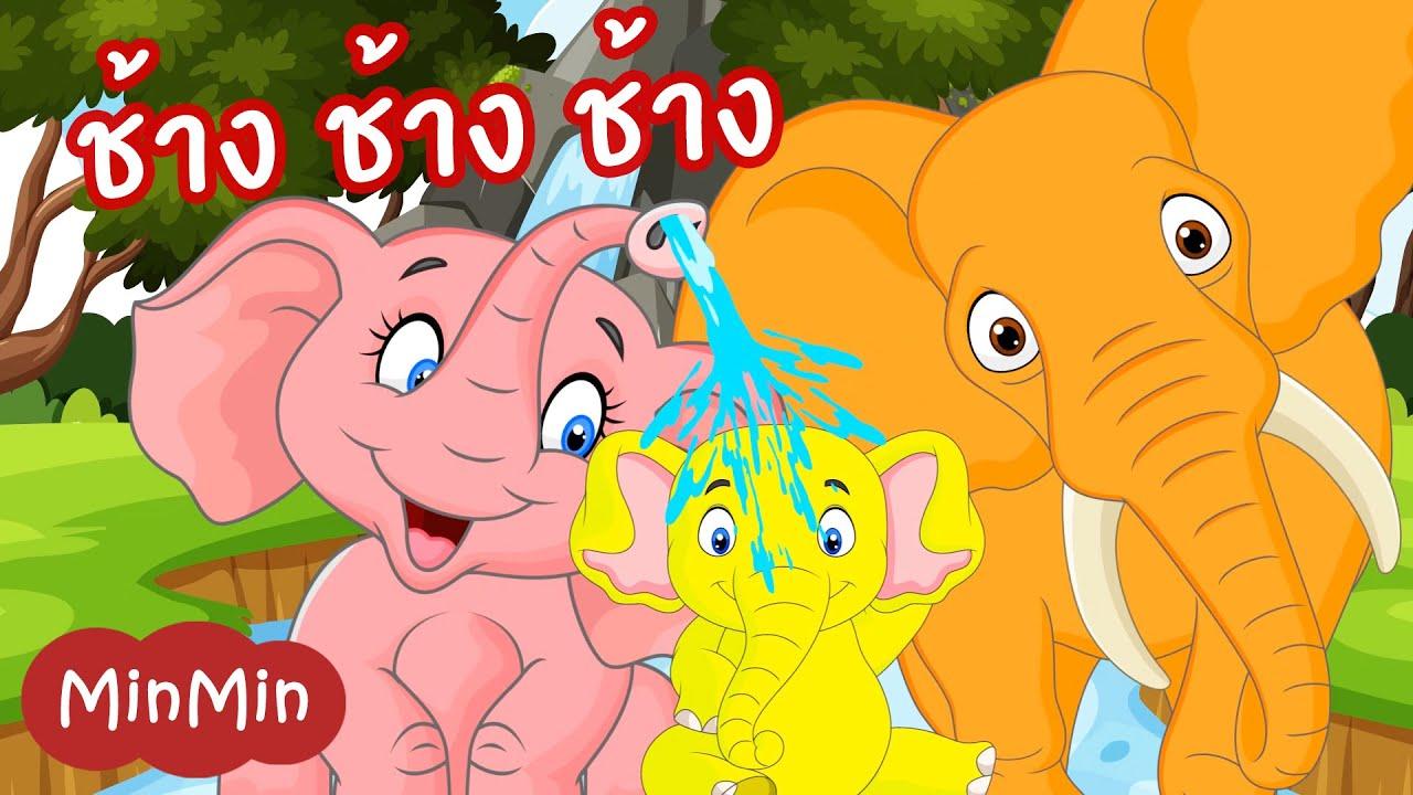 เพลงช้าง ช้าง ช้าง ครอบครัวช้างแสนสนุก สุดน่ารัก | MinMin