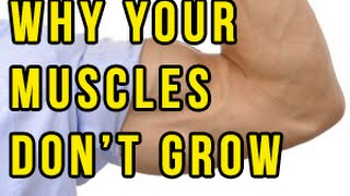Why your MUSCLES ARE NOT GROWING