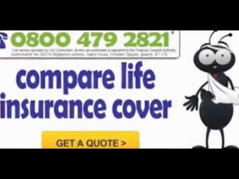 life insurance comparison quotes
