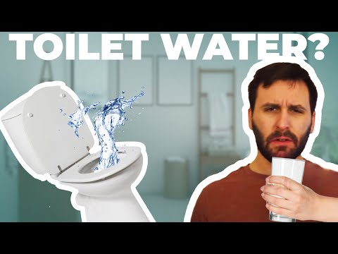 What-Happens-When-You-Drink-Toilet-Water