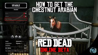 Download Video/Audio Search for RDR 2 Red Chestnut Arabian