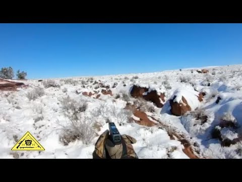 Pistol Pig Hunt [Catch Clean Cook] Arizona, USA