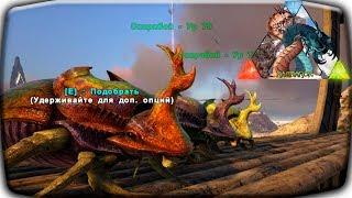 ARK ragnarok приручаем много Скарабеев . Бесконечный источник нефти и удобрений ! Звездные врата! #6
