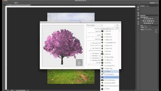 Adobe Photoshop CC - Custom Trees using Pattern Fill