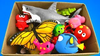 Learn Wild Zoo Animals and Sea Animals with Shark Toys For Kids