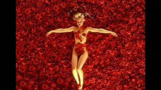 American Beauty Soundtrack (Angela Undress)