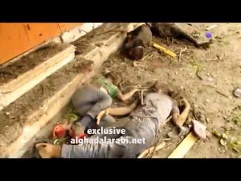 Massacre in Palestine - Gaza- Dozens killed as Israel shells eastern Gaza City