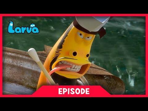 LARVA - SEA BATTLE | Cartoon Movie | Cartoons For Children | Larva Cartoon | LARVA Official