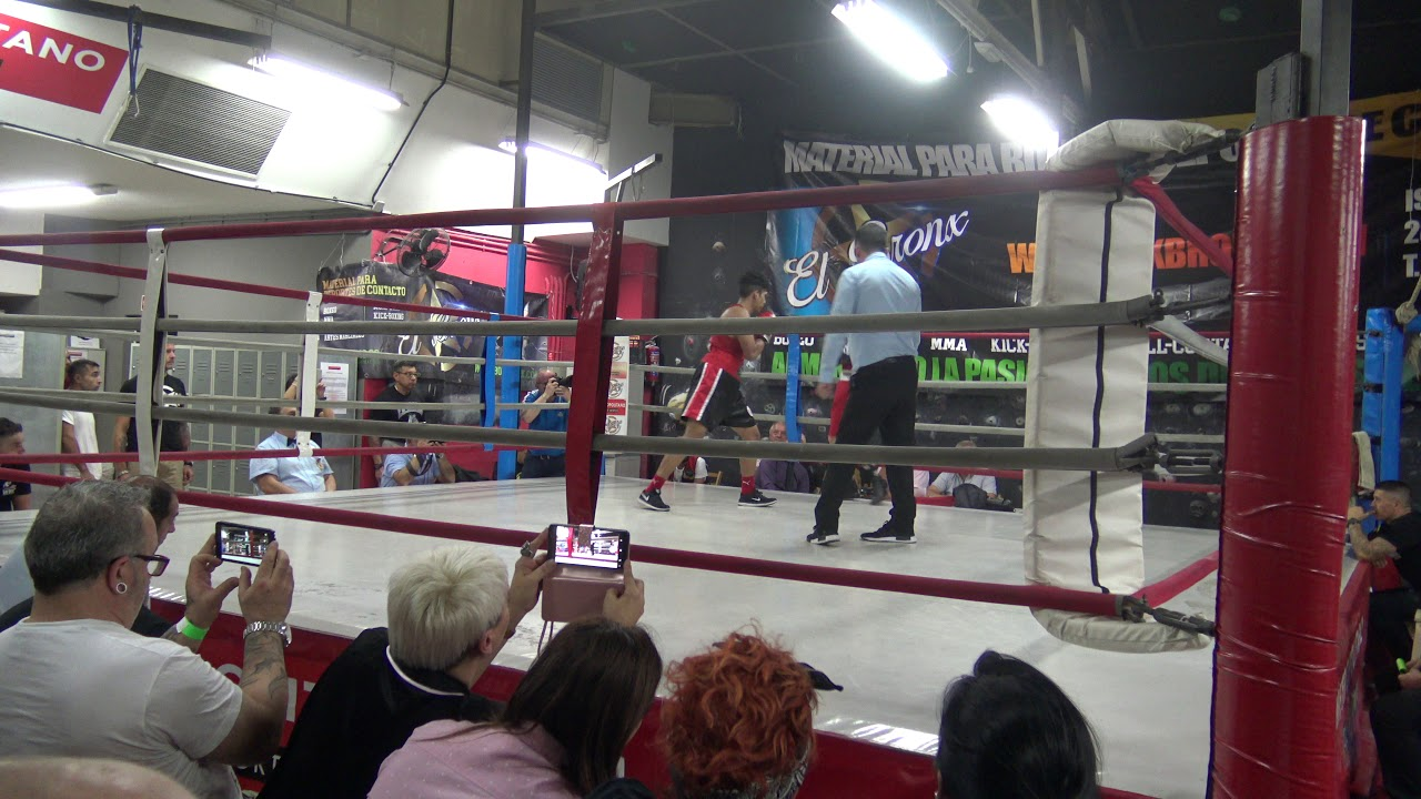 boxeo 14 de octubre en gimnasio metropolitano promotora