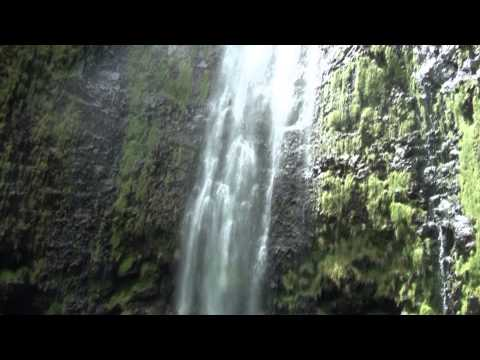 Hawaii Life: The Best of Maui (with Lana