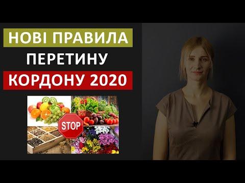 Нові правила перетину кордону! Польща 2020.