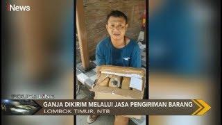 Polisi Tangkap Penerima Paket Ganja Sebanyak 8 Kg di Lombok Timur - Police Line 07/11