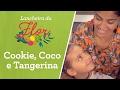 Lancheira saudável: COOKIE, COCO E TANGERINA   Bela Gil