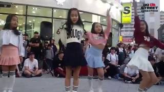 4/24 두다스트릿 춘천 명동스트릿 공연 -  홍시벨벳