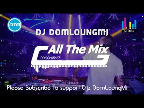 Mrr Plok (All The Mix)Mix By Djz DomLeangMi