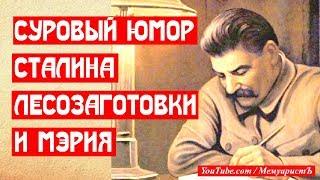 Суровый юмор товарища Сталина. Лесозаготовки и мэрия