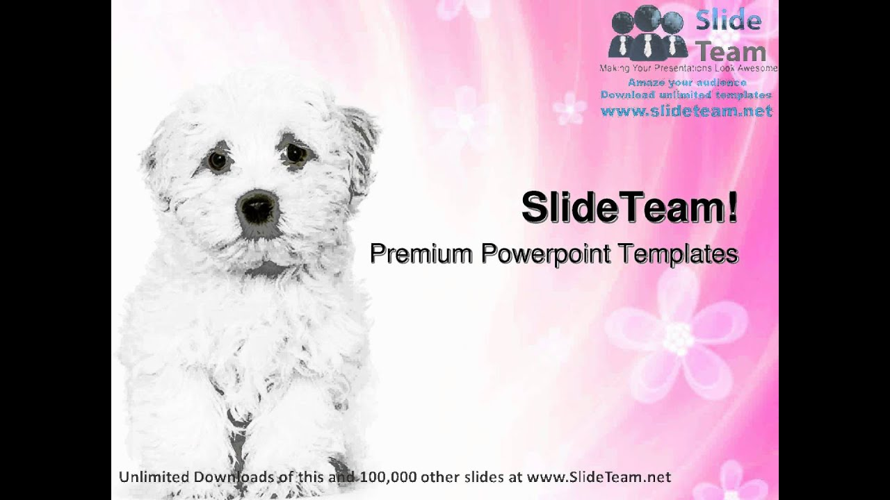 Dog themed powerpoint template vatozozdevelopment dog themed powerpoint template toneelgroepblik Gallery