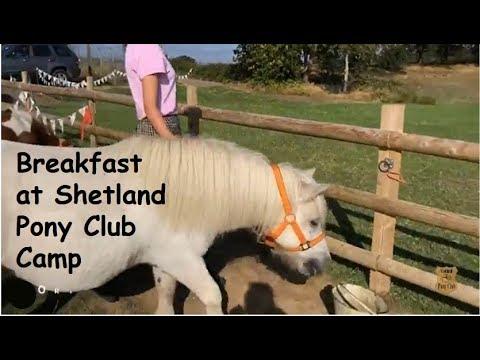 Breakfast at Shetland Pony Club Camp:TV Episode 191