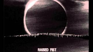 Raised Fist - In circles