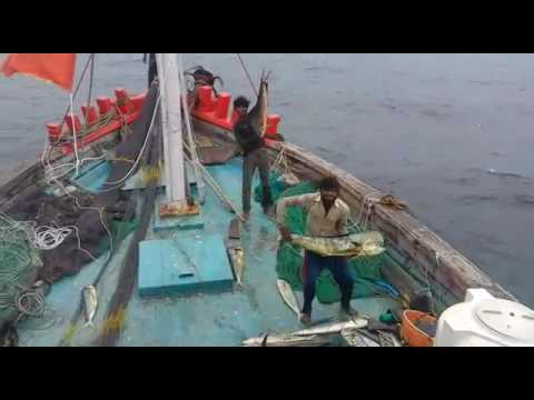 Fishing vessel veraval