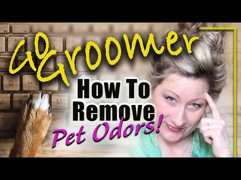 How To Remove Pet Odors! Smelly Dog Ears., Skin And Breath.