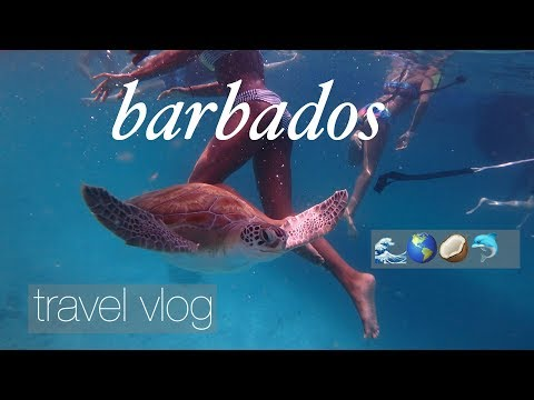 Barbados travel vlog