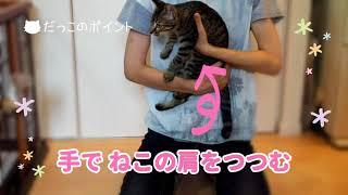 小学生向け書籍「動物の飼い方がわかるまんが図鑑」(学研プラス)シリ...