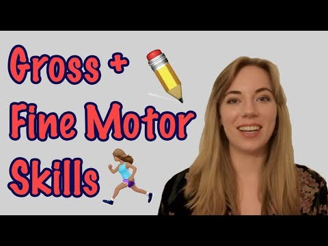 What are Gross Motor and Fine Motor Skills?