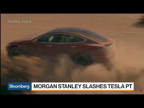 Tesla's Worst-Case Price Target Slashed to $10 at Morgan Stanley