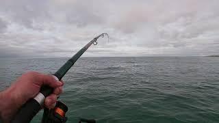 Морская рыбалка на макрель