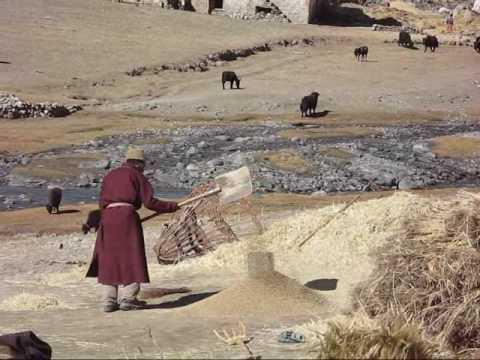 Trekking Wild Zanskar - Padum to Lamayuru, India