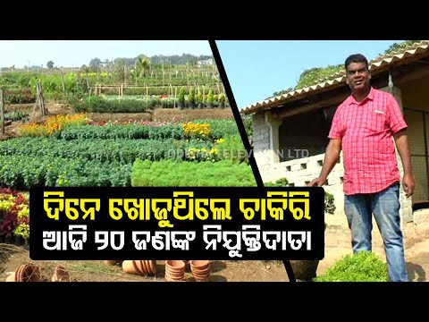 Success Story Of Jajpur's Horticulture Farmer Sitanshu