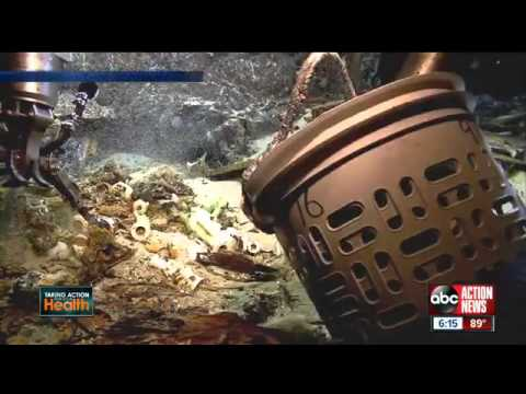 Tampa, FL - ABC Action News Coverage of Morphogenesis' Collaboration with Odyssey Marine Exploration