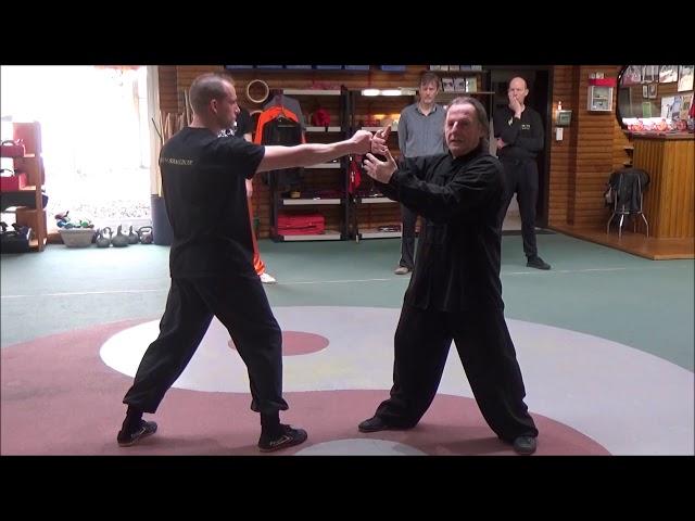 3e week opleiding Fajin en Yin en Yang door Grootmeester Walter Toch