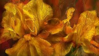 Цветы говорят с сердцем