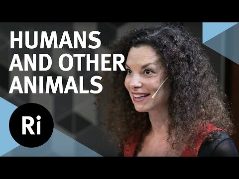 Humans and Other Animals: Cultural Evolution and Social Learning
