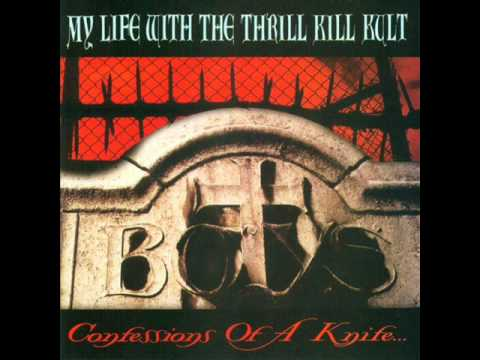 MY LIFE WITH THE THRILL KILL KULT - HAND IN HAND
