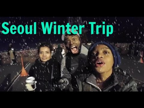 First Trip to Seoul South Korea.. Travel Vlog Winter Vacation 2016 (Korean Food, BST,Shopping)